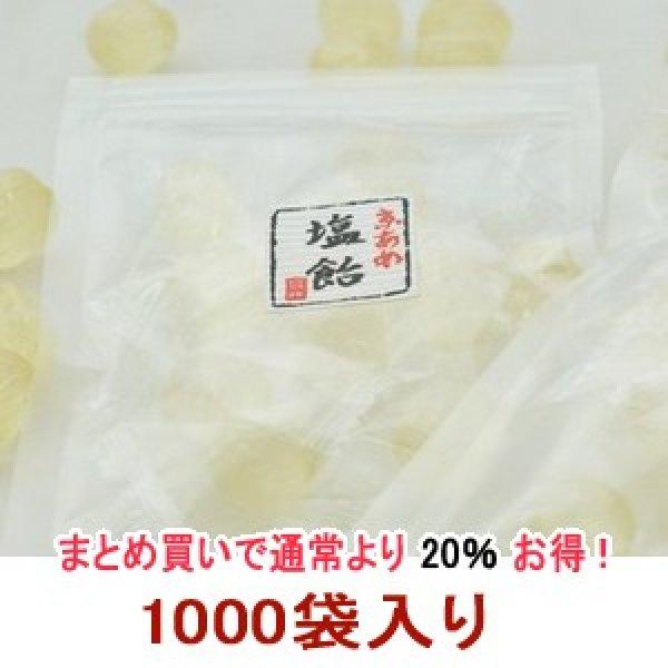 画像1: 業務用!!塩飴『食べきりサイズ』便利なチャック付☆1000袋入り  (1)