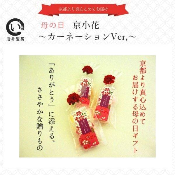 画像1: 母の日 2021 プチギフト プレゼント 京小花〜カーネーションVer〜  (1)