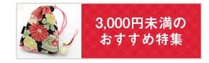 3,000円未満おすすめ特集