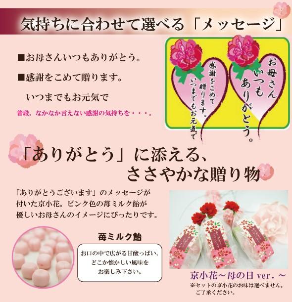 母の日 プレゼント 飴の素キャンディーセット